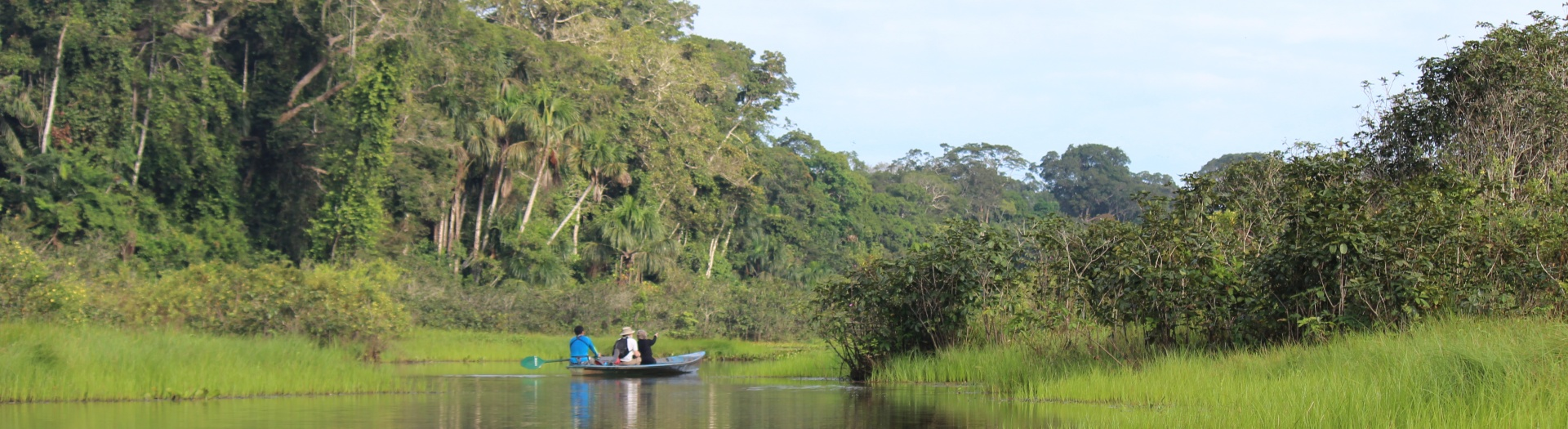 Immersion totale en Amazonie